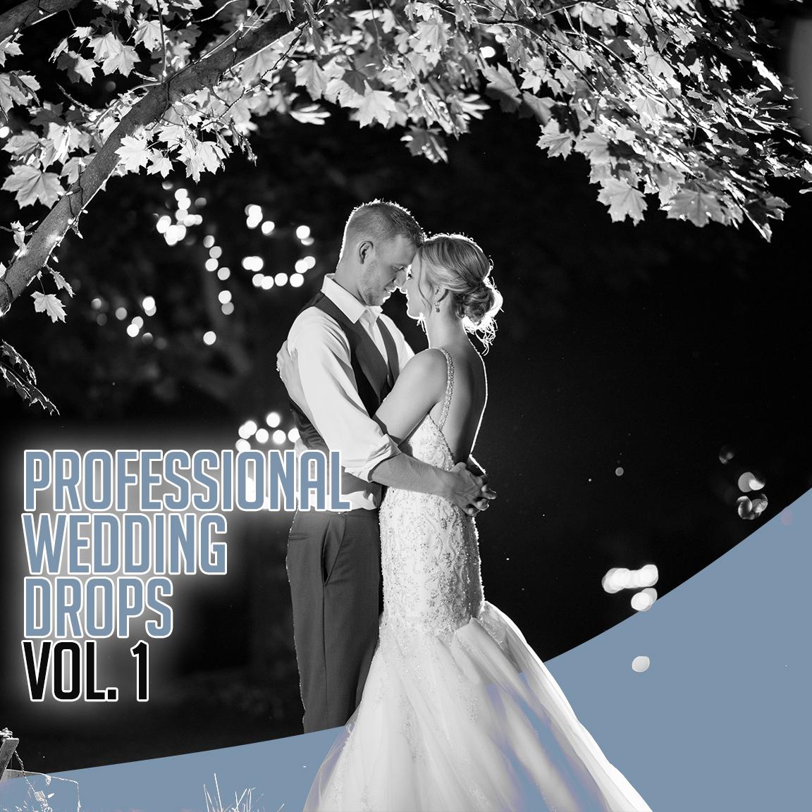 Wedding Dj Drops – Vol  1